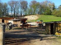 Pferdehof Steinberger Aussenanlagen, Reitplatz, Infrastruktur